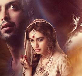 Mah-e-Mir Movie Review