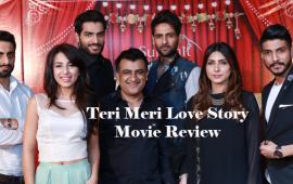 teri-meri-love-story